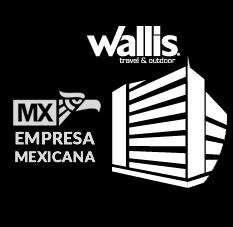 100% EMPRESA MEXICANA